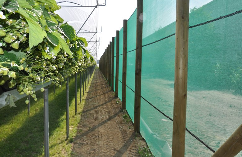 Windbreak nets
